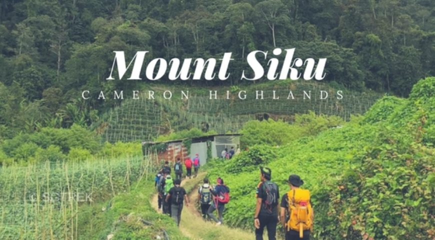 MY20190301-Mount Siku-Cameron Highlands