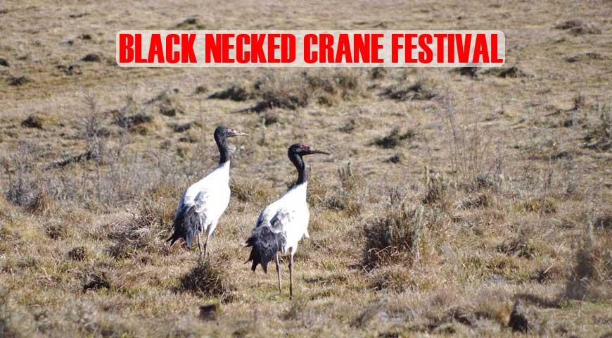 7D6N BLACK NECKED CRANE FESTIVAL