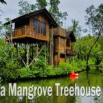 Anaya Mangrove Treehouse Retreat