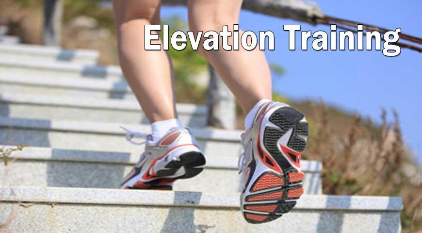 Elevation Training
