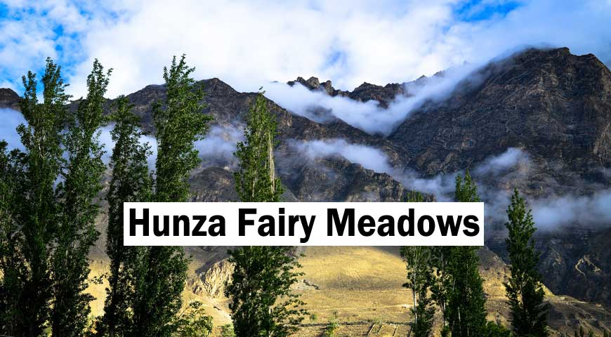 Pakistan: Colors of Hunza Blossom Tour 2020
